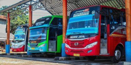 Lebaran, Tarif Bus AKAP Pandeglang Tetap. Laporkan Bila PO Naikkan Harga!