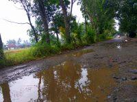 Pembangunan Tak Diselesai, Warga Pertanyakan Lanjutan Proyek Jalan Bama-Pagelaran