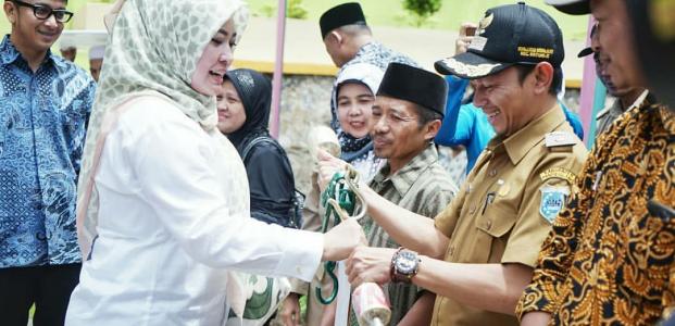 Benahi Internal Pemerintah, Alasan Irna Baru Lakukan Kunker Formil ditahun 2018